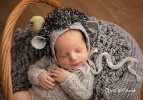фото новорожденного мальчика