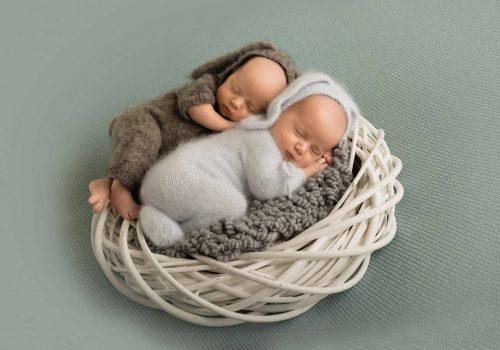 профессиональная фотосессия новорожденных двойняшек в студии